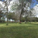 Parque Pozo Norte