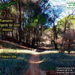 Ruta senderista con Ecologistas en Acción