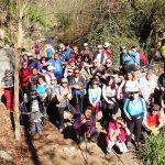 Ruta de ecologistas en Acción